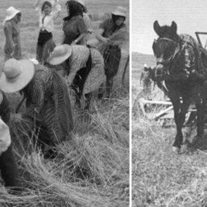 Este precioso homenaje a los antiguos agricultores te va a emocionar