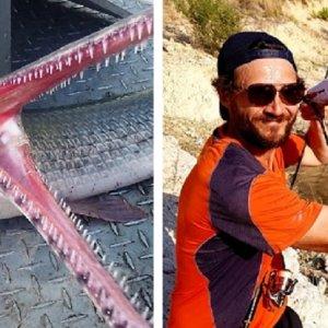 Capturan un extraño pez prehistórico en un pantano de la Comunidad Valenciana
