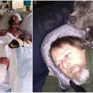 Le amputan piernas y manos después de tocar la saliva de su perro
