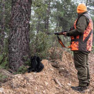 Esta es la situación de la caza en toda España antes del fin de semana