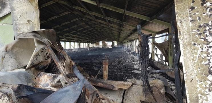 Animalistas queman tres gallineros en Francia