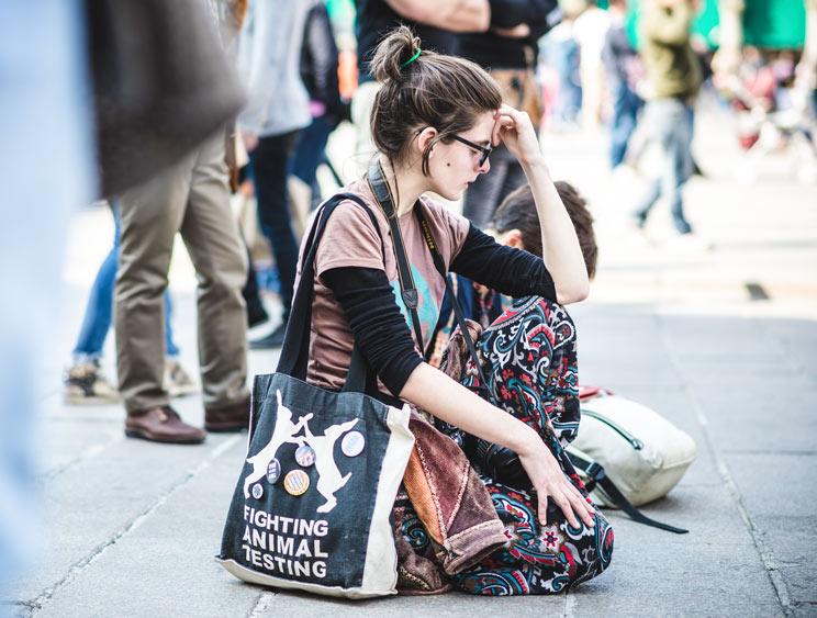 Golpe al animalismo: el TC anulará la prohibición de los toros en Cataluña