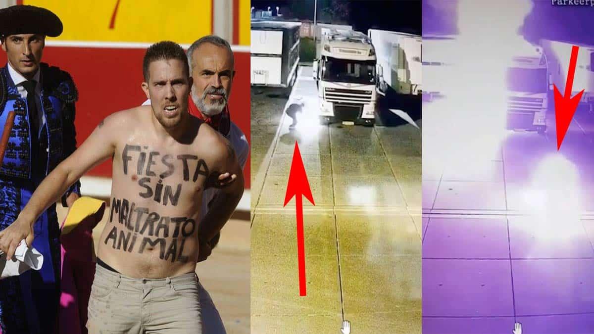 Un animalista en busca y captura en España se prende fuego al incendiar los camiones de un matadero