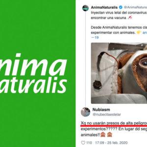 Los animalistas rechazan investigar la vacuna del coronavirus en animales y proponen «usar presos»