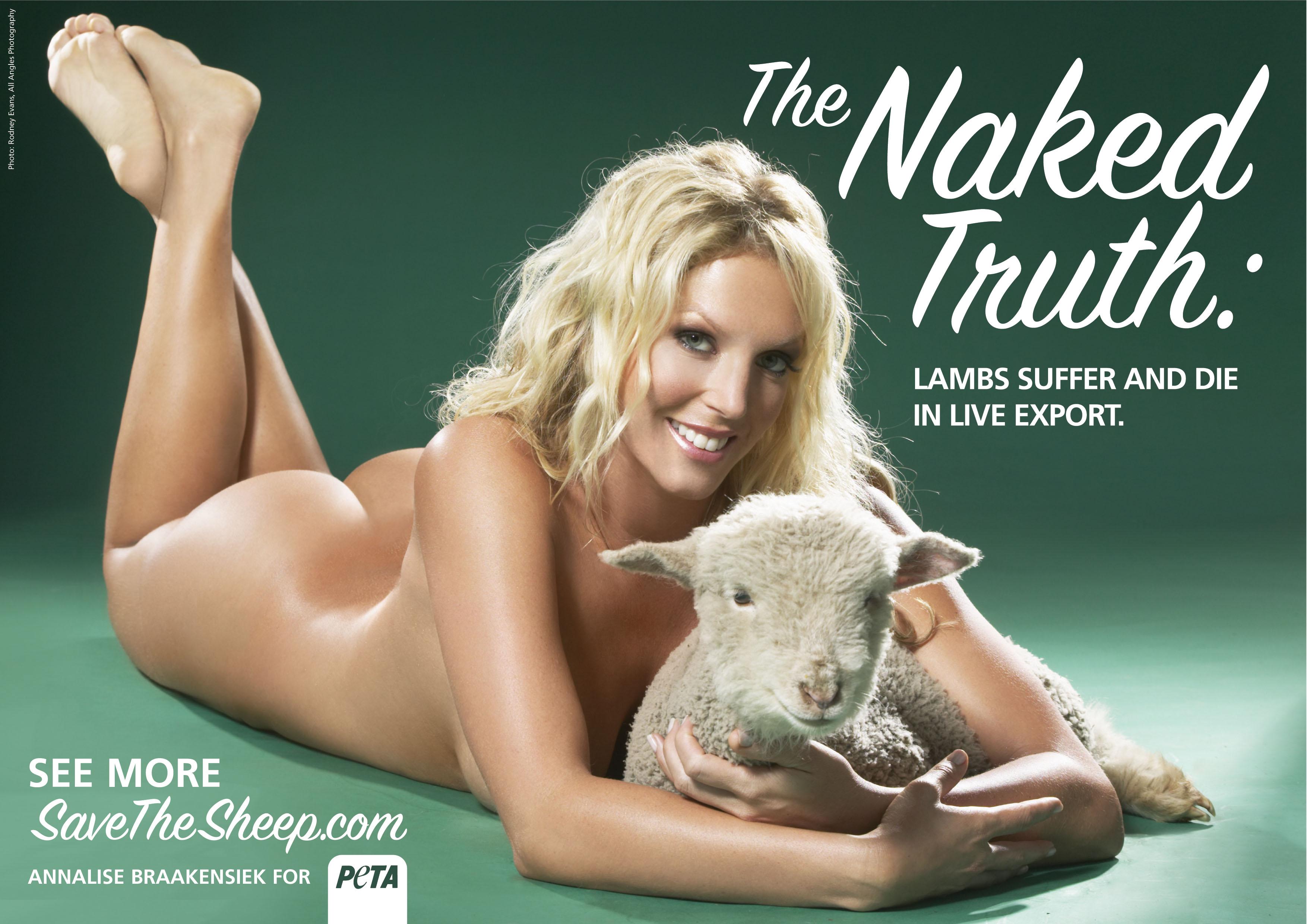 PETA destina la mayoría de su presupuesto a campañas de comunicación que suelen estar protagonizadas por mujeres famosas.