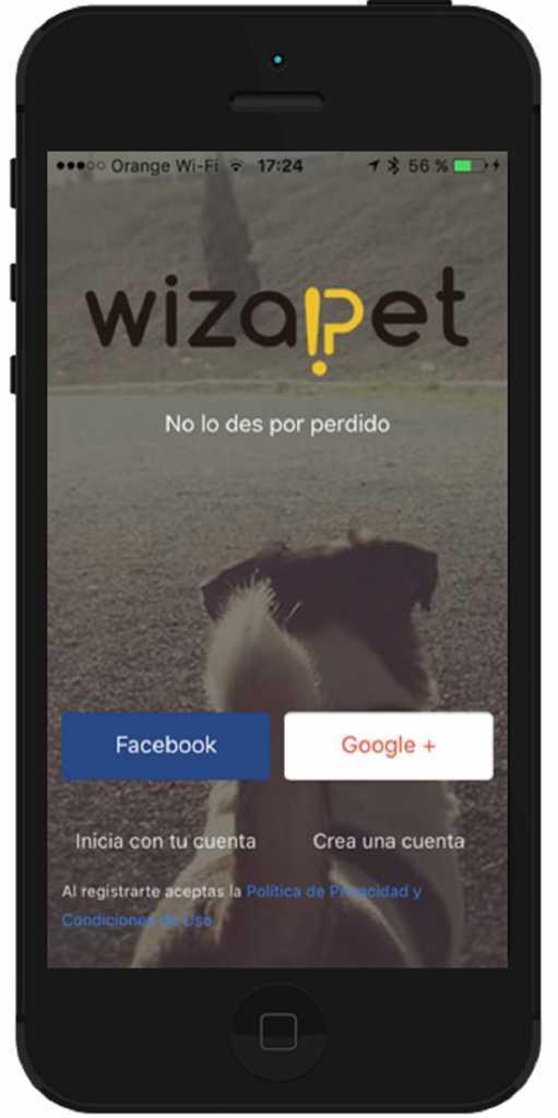 Aspecto inicial de la aplicación. / Wizapet