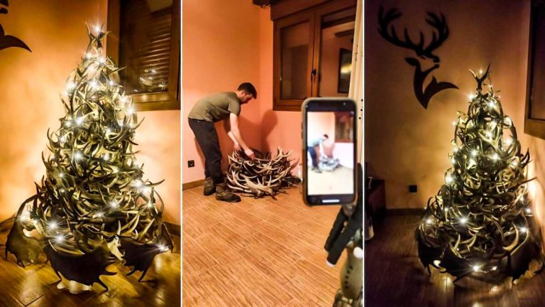 Varias imágenes del proceso de realización del árbol de navidad con cuernas de ciervo © A. J.