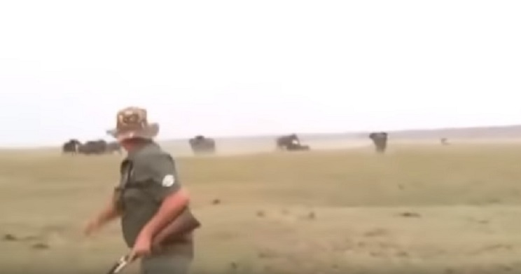 Dos cazadores disparan a un elefante y el resto de la manada carga contra ellos