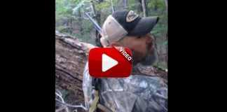 ataque-oso-a-cazador