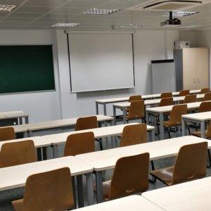 Aragón introduce la doctrina animalista en sus aulas de primaria, ESO y Bachillerato
