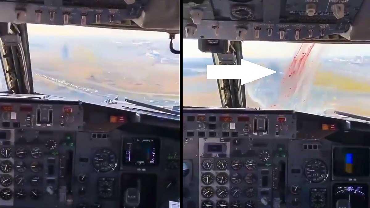 Esto es lo que pasa cuando un avión choca con un ave al aterrizar (y así puede evitarlo la caza)