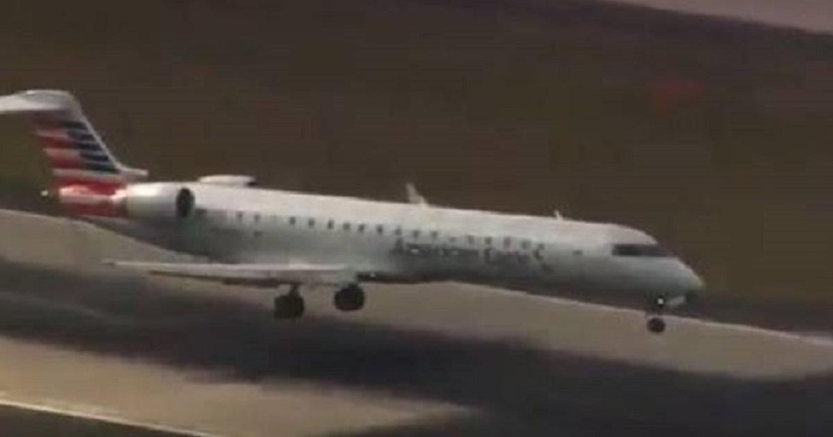 Un avión impacta contra un ciervo y tiene que realizar un aterrizaje de emergencia