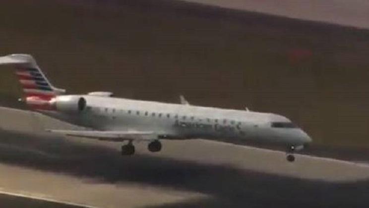 avión colisiona con un ciervo-edit
