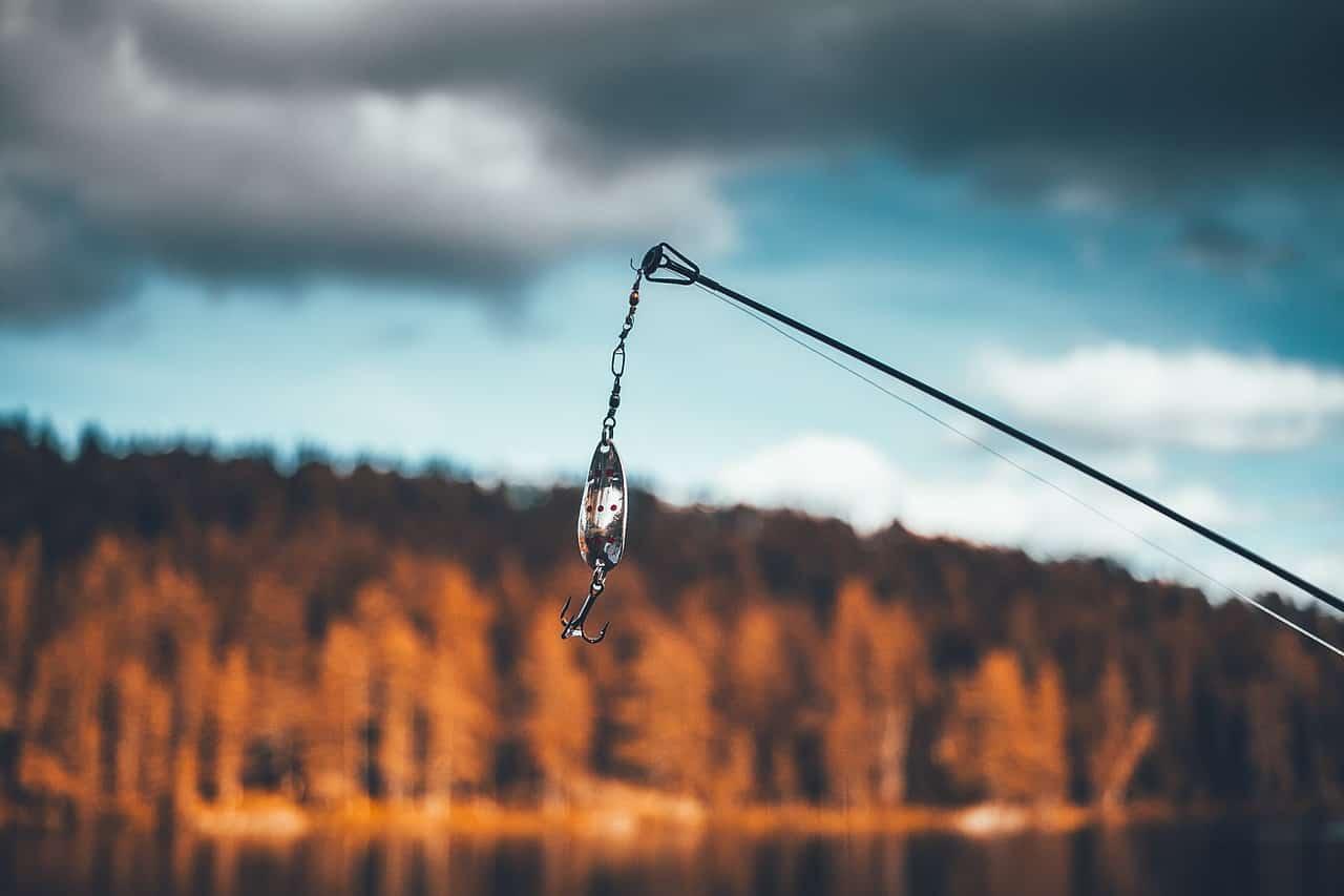 Los 6 mejores potenciadores para tus cebos de pesca