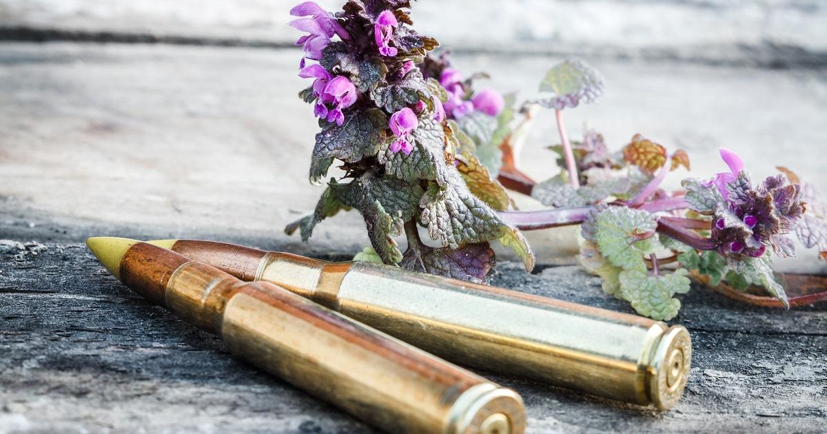 balas con restos incinerados destacada