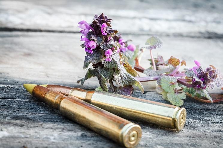 balas con restos incinerados