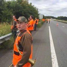Dan una batida de jabalí utilizando como cortadero una carretera nacional