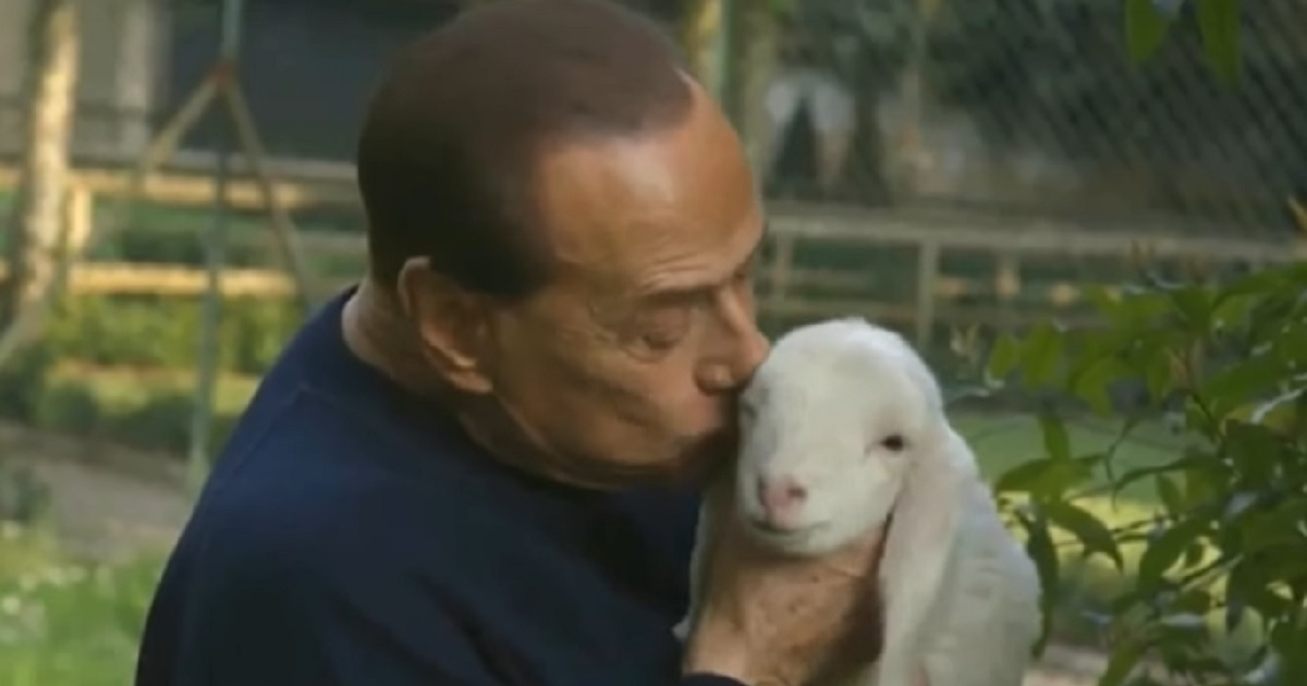 La última extravagancia de Silvio Berlusconi: hacerse animalista