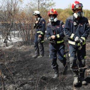 Una voluntaria denuncia que algunos animalistas aprovecharon los incendios de Madrid para robar animales