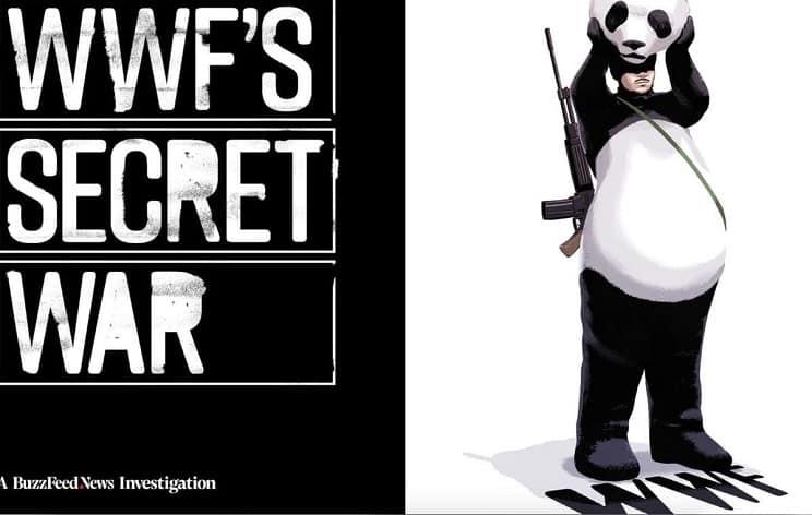 Alemania congela las subvenciones a WWF tras el escándalo de las violaciones