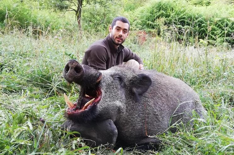 Caza en Galicia un descomunal jabalí que llegó a confundir con un oso