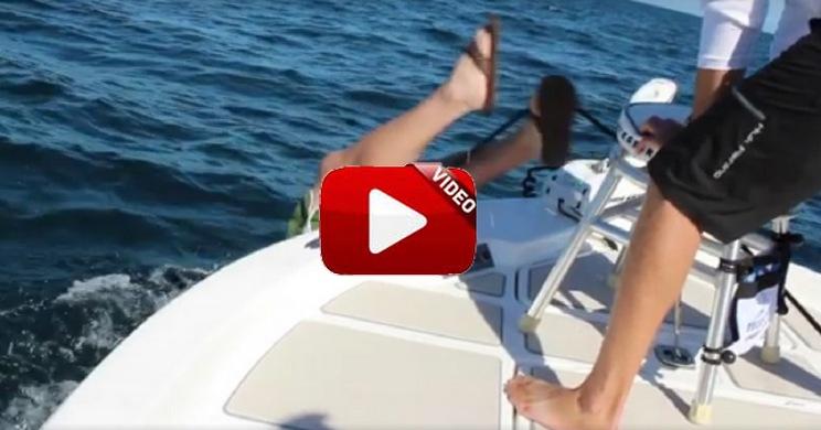 Este mero goliat hace volar por la borda a este pescador