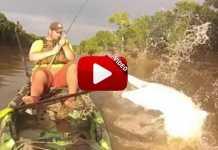 caiman-ataca-a-pescador