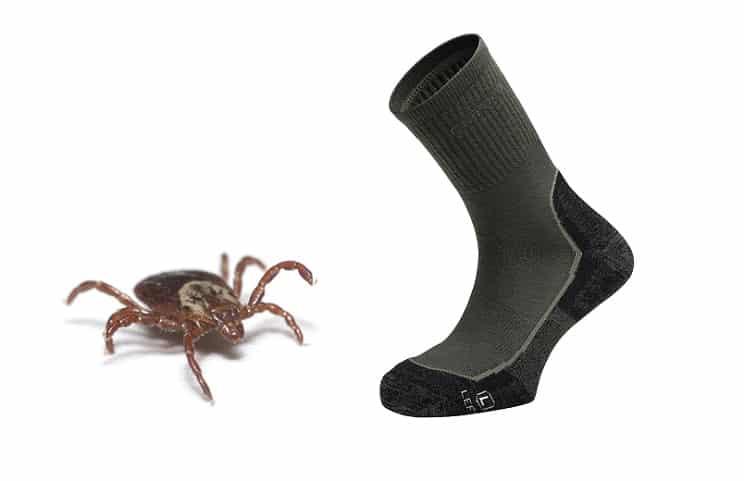 Chiruca lanza su primer calcetín antigarrapatas