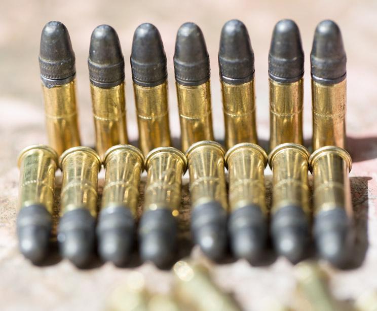 La Ley de Caza de Castilla-La Mancha también prohibirá el calibre .22 y el .17 HMR