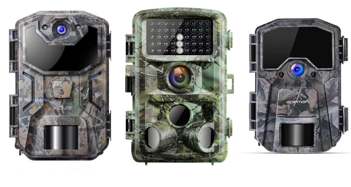 Algunas de las cámaras trampa mejor valoradas de Amazon.