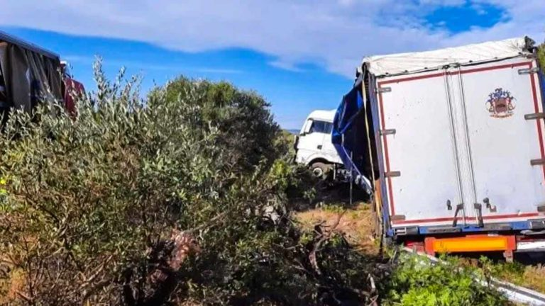El camión dañado que salió de la carretera. © Diari de Tarragona