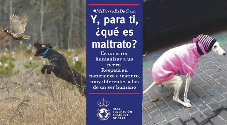 campaña humanizacion maltrato perros RFEC