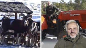 Santi Cañizares aparece alimentando a varios muflones en medio de la nieve