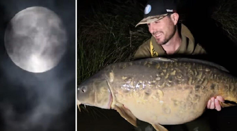 Una experiencia inolvidable en un lago con carpas de hasta 38 kilos