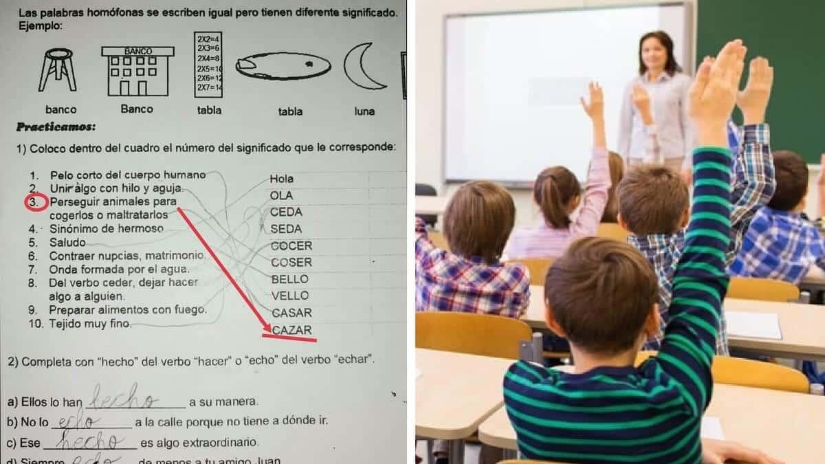 Un colegio de Cádiz 'enseña' a niños de 8 años que la caza es «maltratar animales»