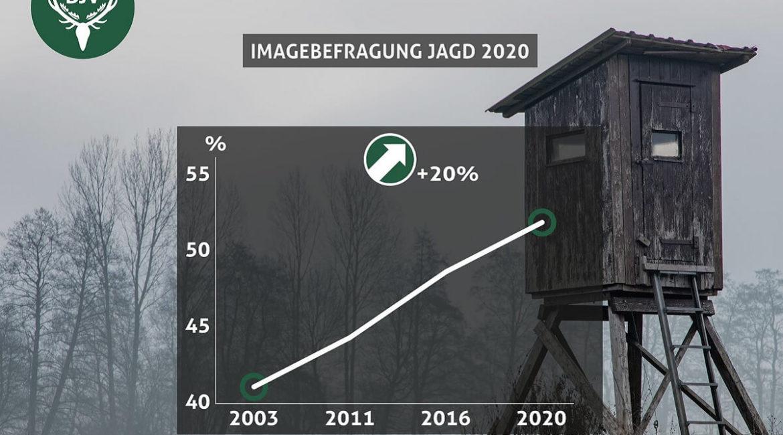 El apoyo de la sociedad a la caza aumenta en Alemania, según una encuesta