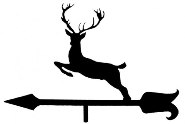 caza-animal-chimeneacue31g04-3-alcaglascom
