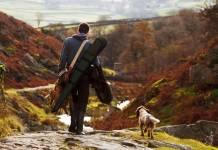 caza con perro