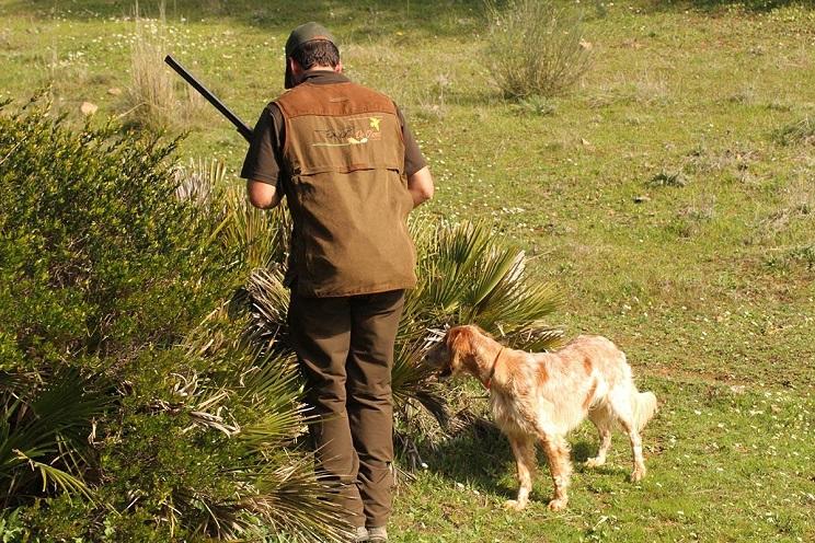 caza-con-perros-prohibida-podemos