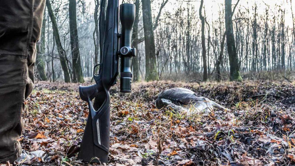 En Francia la caza está declarada actividad esencial, pero solo para tres especies de mayor. ©Israel Hernández