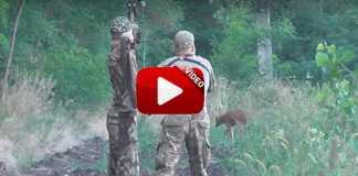 caza de corzos con arco.