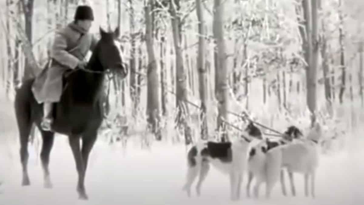 Así cazaban lobos con perros en 1910: uno de los vídeos más antiguos que se conservan