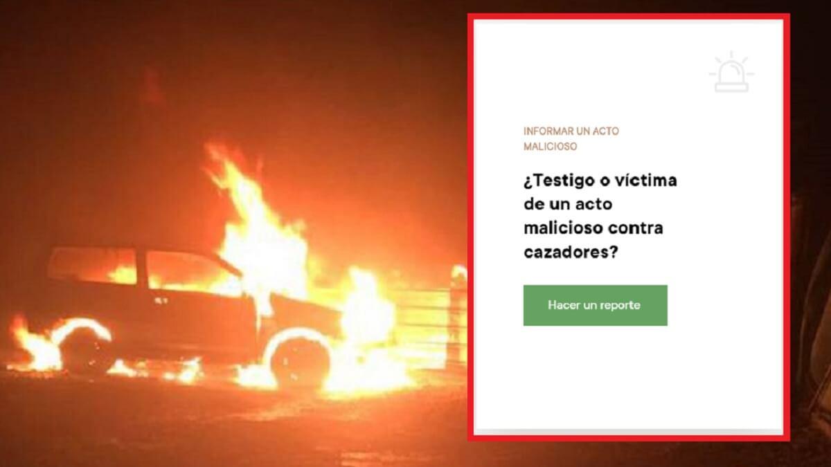 La Federación de Caza de Francia crea un observatorio de violencia animalista contra cazadores