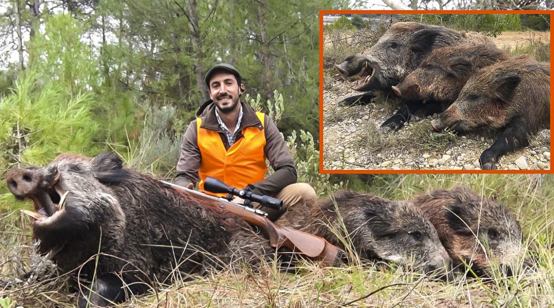 Caza tres jabalíes, uno de 130 kilos, en «el puesto más feo» de la temporada