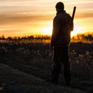 La RFEC pide que la caza se autorice en la fase 1 y amenaza con ir a los tribunales si no se permite