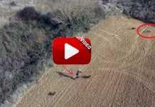 caza-zorros-dron
