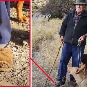 La cautivadora historia de Manuel, el cazador de 82 años que aún caza en abarcas
