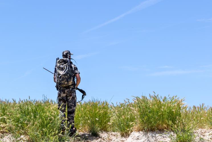 cazador-desorientado