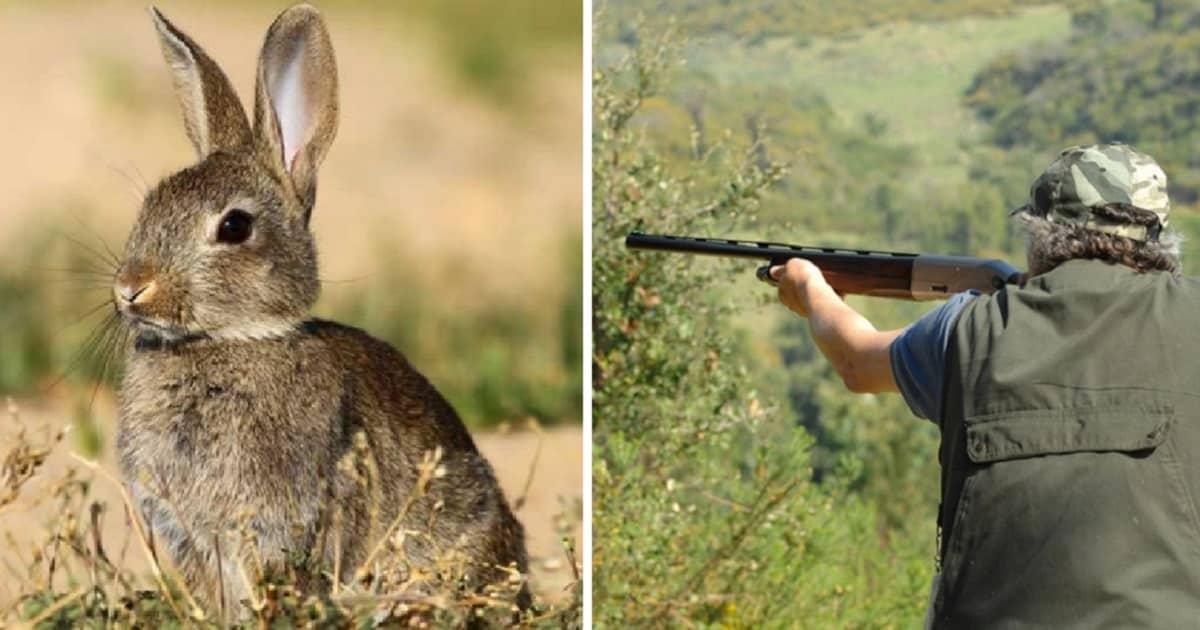 cazador dispara a su hermano