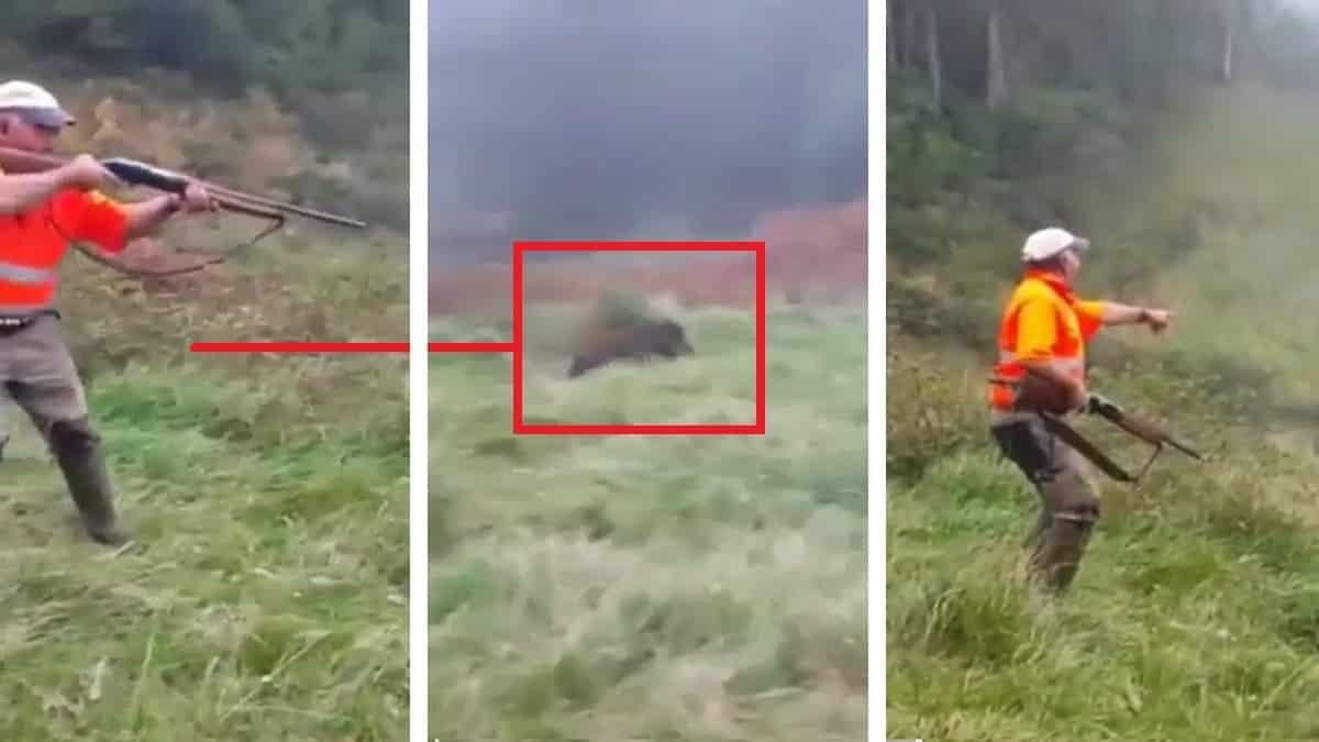 Graban a un cazador fallando un jabalí y el vídeo acumula 171.000 reproducciones
